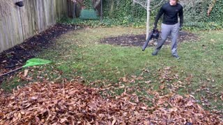 Oddly Satisfying Fall Cleanup (time lapse