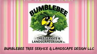 south jersey tree service - Video