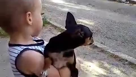 boy with a dog in his arms