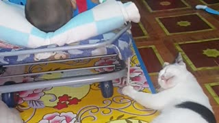 Cat Rocks Baby While At The Same Time Cleans Its Paws - Video