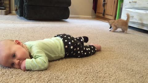 Feisty Kitty Steals Baby's Sock Right Off Their Foot