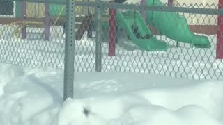 Abominable Snowman Seen on Playground Swing