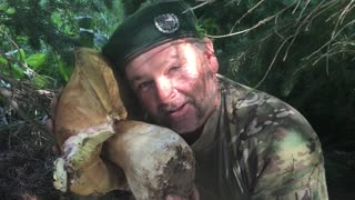 Man Finds Record Breaking Mushroom - Video