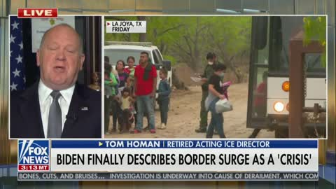Trump's Ice Chief On Border And Refugee Policies