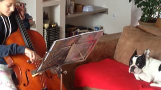 Dog sings while girl plays cello - Video