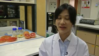 New biodegradable packaging doubles shelf life of food - Video