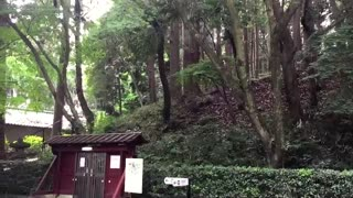 Japanese park has automatic doors at entrance - Video