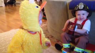 Guitar playing toddler fireman attempts serenade of would be girlfriend dressed as a chicken  - Video