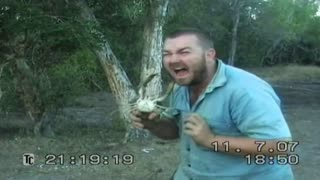 Why you should fear australian crabs - Video