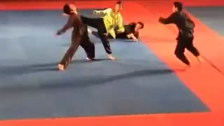 Female martial art performer - Video