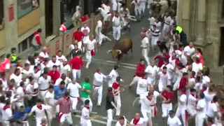 Six gored on day two of Spain's bull-running week - Video
