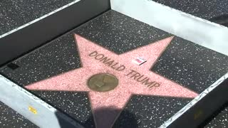Artist erects wall around Trump's Walk of Fame star - Video