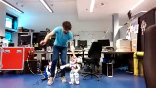 Persian Dance of Robots in the Netherlands - Video