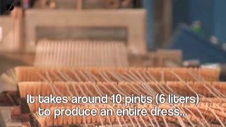 Fabric Made From Milk - Video