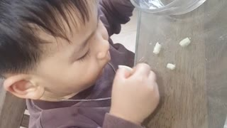 Adorable Baby Loves Noodles - Video