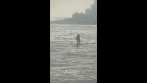 Man Dressed in Suit Paddle Boards Across the Hudson River