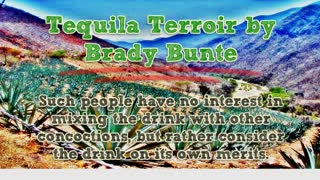 Tequila Terroir by Brady Bunte