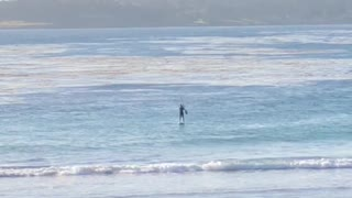 Man in distance paddle boarding - Video
