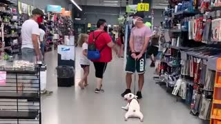 Doggy Thinks Shopping Is a Drag