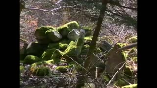 Celtic ruins of megaliths in France  - Video