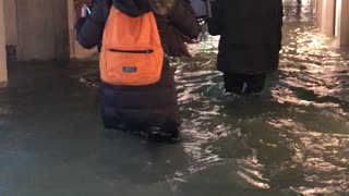 Jaw-dropping footage shows tourists walking through flooded Venice