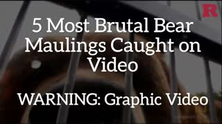 5 Most Brutal Bear Maulings Ever Caught on Camera - Video