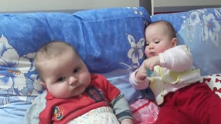 Baby playing with baby funny