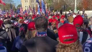Million MAGA March Sebastian Gorka