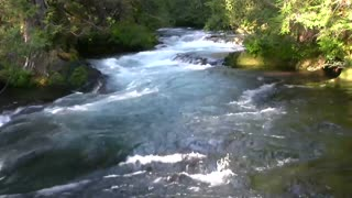 Relaxing 3 Hour Video of a Mountain Stream