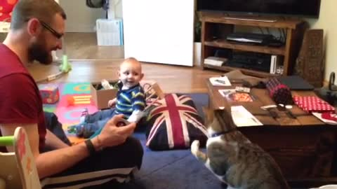 Baby cracks up at cat playing with tape measure