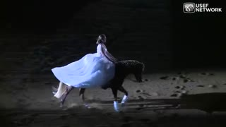 Woman in white rides in, but watch the horse . She totally steals the show - Video