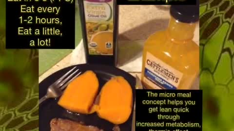 Micro Meal Example