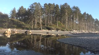 Olympic National Park Beaches, Washington, USA - Video