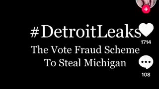Detroit Election Fraud Instructions