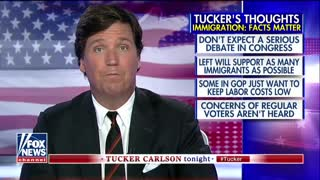 Tucker: Illegal immigration is literally costing US hundreds of millions