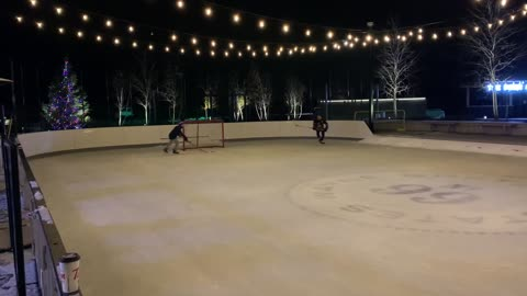 Shinny hockey at Wayne Gretzky's Estate Winery