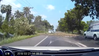 Pineapple Truck Wrecks While Driving