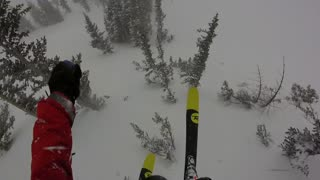 Skier Crashes into Tree After Jumping Off Cliff