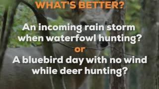 Which of These is a Better Hunt?