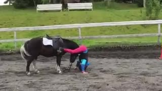 World's BEST Pony – Every Child Needs One Of These! - Video