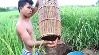 Net Fishing at pailin Province - Khmer Cast Net Fishing -Cambodia Traditional Fishing ( Part 101)  - Video