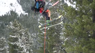 Rescue Dog Chairlift Practice - Video
