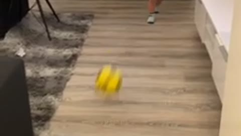 Baby gets hit in the face with soccer ball