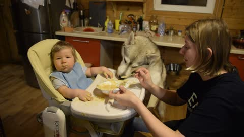 What to do if the baby is all dirty in porridge ?? Call Husky ZOHAN