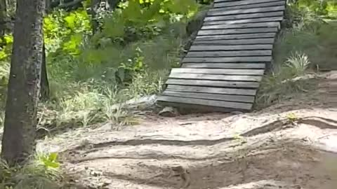 Mountain bike hill ramp fail falls off into grass hits branch