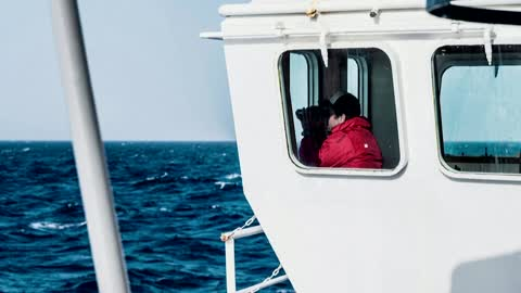Boat packed with migrants shipwrecks off Libya