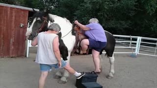 Large Woman Can't Dismount Her Horse - Video