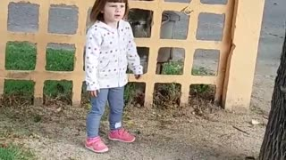 my girl plays with a squirrel - Video