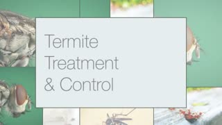 Best Termite Pest Control NJ - Video