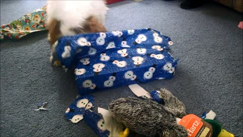 Diego opens his Christmas present